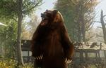 Amazon Games Studios' MMORPG 'New World'- Developer Diaries