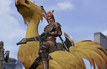 Final Fantasy XI for Mobile has reportedly stopped production