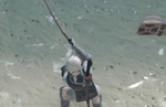 Nier Replicant Fishing: controls, tips, fish locations & bait list