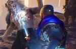 The Last Oricru - Gamescom 2021 Trailer
