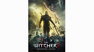 The_witcher_2_render_battle_b