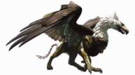 Dragon s dogma   griffin