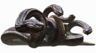 Dragon s dogma   hydra