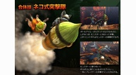 Monster hunter 4 2013 01 09 13 003