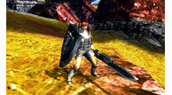 Monster hunter 4 2012 12 12 12 009