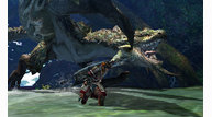 Monster hunter 4 2013 01 09 13 005