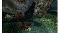 Monster hunter 4 2013 01 09 13 009
