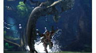Monster hunter 4 2013 01 09 13 008