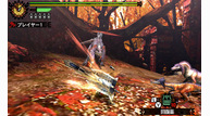 Monster hunter 4 2012 12 12 12 015