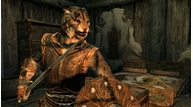 Skyrim_screenshot_06
