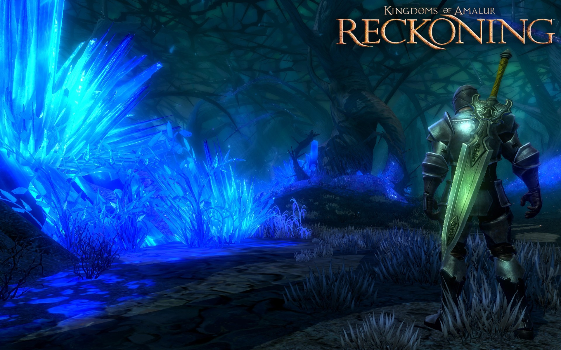 An open-world action rpg, kingdoms of amalur: reckoning is set in amalur