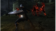 Demons souls 028