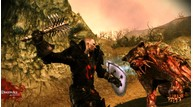 Dragonage awakening 14