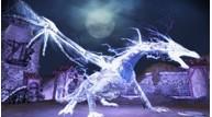Dragonage awakening 25