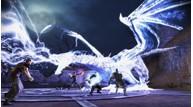 Dragonage awakening 29