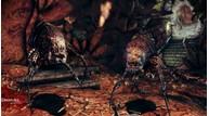 Dragonage awakening 38