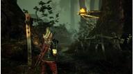 Witcher2  28