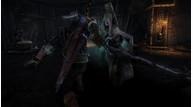 Witcher2 050411 2