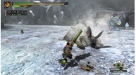 Monster hunter 3 ultimate 2012 11 19 12 004