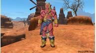 Dragonquest10 12