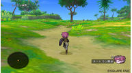 Dragon quest x 2010 014