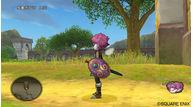 Dragon quest x 2010 004