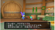 Dragon quest x 2010 023