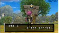 Dragon quest x 2010 008