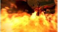 Dragons dogma 06