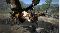 Dragons dogma 10