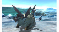 Monster hunter 4 2013 05 16 13 021