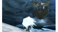 Monster-hunter-4_2013_05-16-13_023