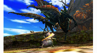 Monster hunter 4 2013 05 16 13 009