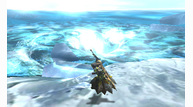 Monster hunter 4 2013 05 16 13 004