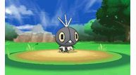 Pokemon-x-and-y_2013_06-14-13_013