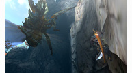 Monster-hunter-4_2013_05-16-13_013