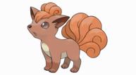 Pokesunmoon vulpix