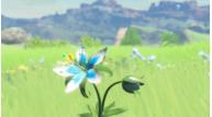 Nintendoswitch tlozbreathofthewild presentation2017 scrn26