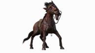 Evil horse