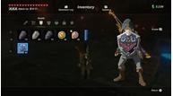 Zelda hylianshield