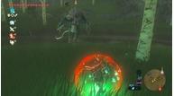 Zelda lynel