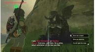 Zelda botw stamina max heart containers