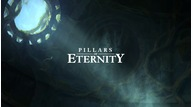 Pillars of eternity ps4 review %282%29