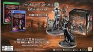 Sword art online fatal bullet collector na
