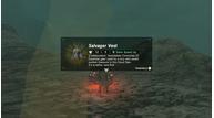 Zelda breath wild xenoblade 2 salvager vest2