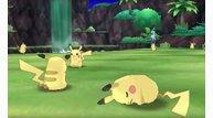 Pikachu valley