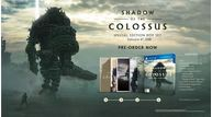 Shadow of the colossus remake special edition