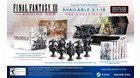 Final-Fantasy-XII_PC-LE1.jpg