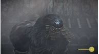 Shadow of the colossus 20180205133105