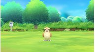 Pokemon lets go eevee pikachu jun162018 04